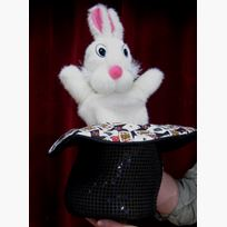 Rabbit in Hat Puppet