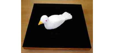 Dove Tray, new model